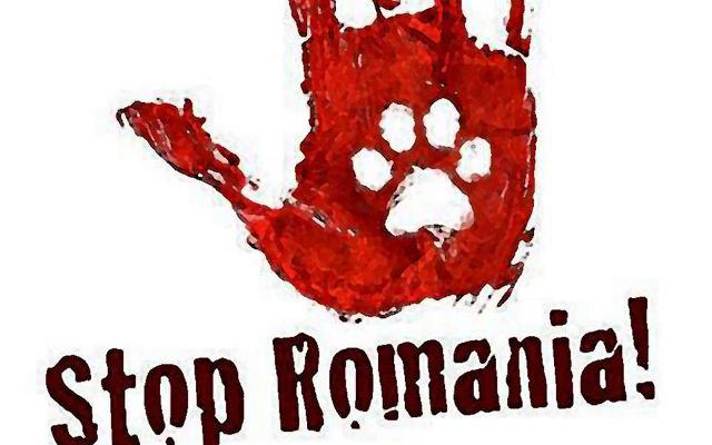 red-romania-2