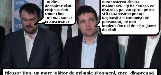 usr-ghinea-nicusor
